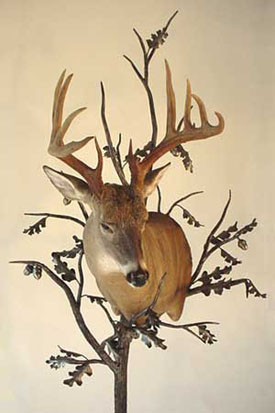 Deer Mount Tree Stand