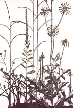 Detail - Compass Plant, Mullen, Big Blue Stem, Chicory, Purple and Prairie Cone