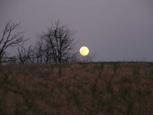 Full Moon over the Ridge